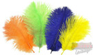 Ostrich Spey Plumes