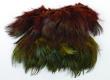 Ringneck Pheasant Rump Hackle