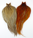 Hebert Miner Rooster Capes, Silver Grade